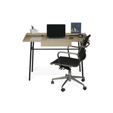 TEMAHOME Desk Ply L 120cm with drawer